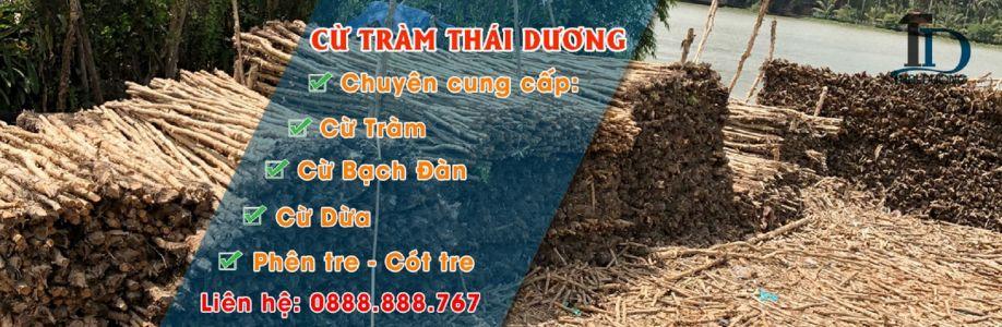 Thái Dương Cừ Tràm Cover Image