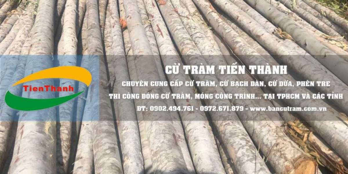 Bán cột chống gỗ bạch đàn giá ưu đãi