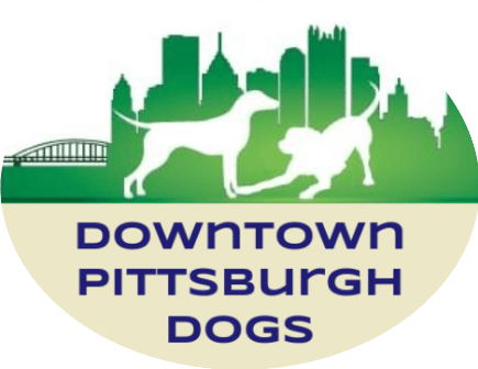 Downtown Pittsburgh Dogs - Full Service Dog Walking & Pet Sitting