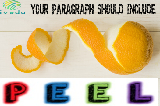 The Peel Essay Writing Method | How To Structure Peel Paragraphs