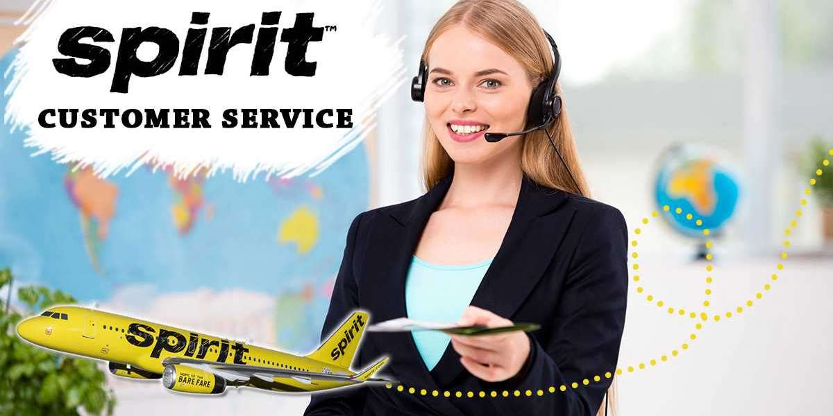 Get Instant Solutions On Multiple Booking Related Queries Via Spirit Airlines Phone Number