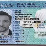 fake id drivers license