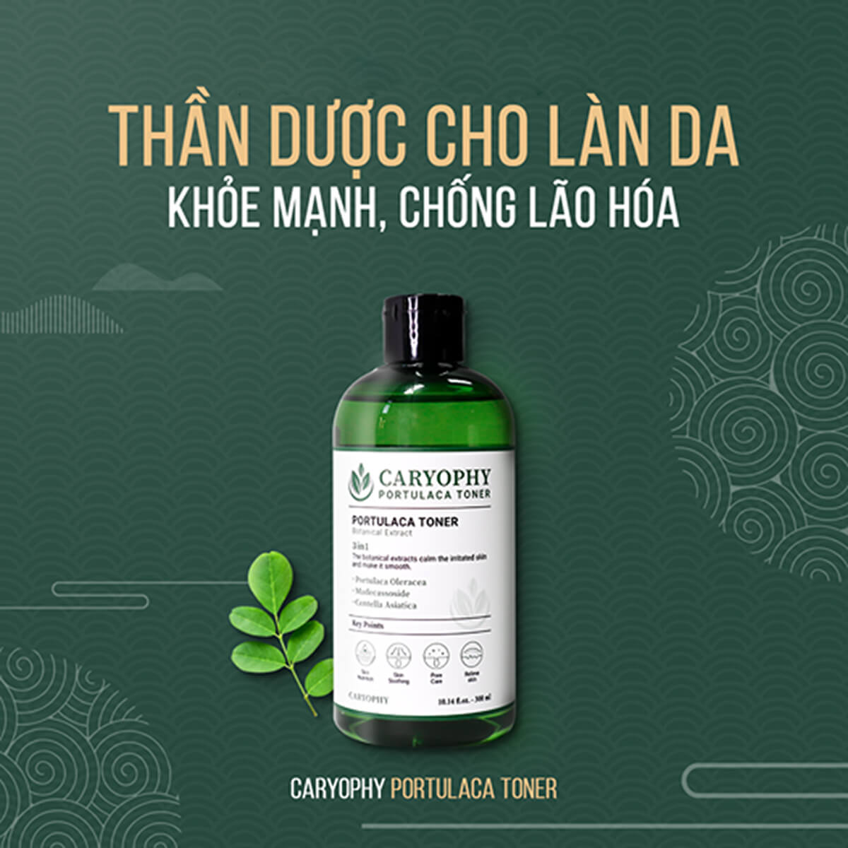 Toner Caryophy Portulaca - Mỹ Phẩm Caryophy Việt Nam