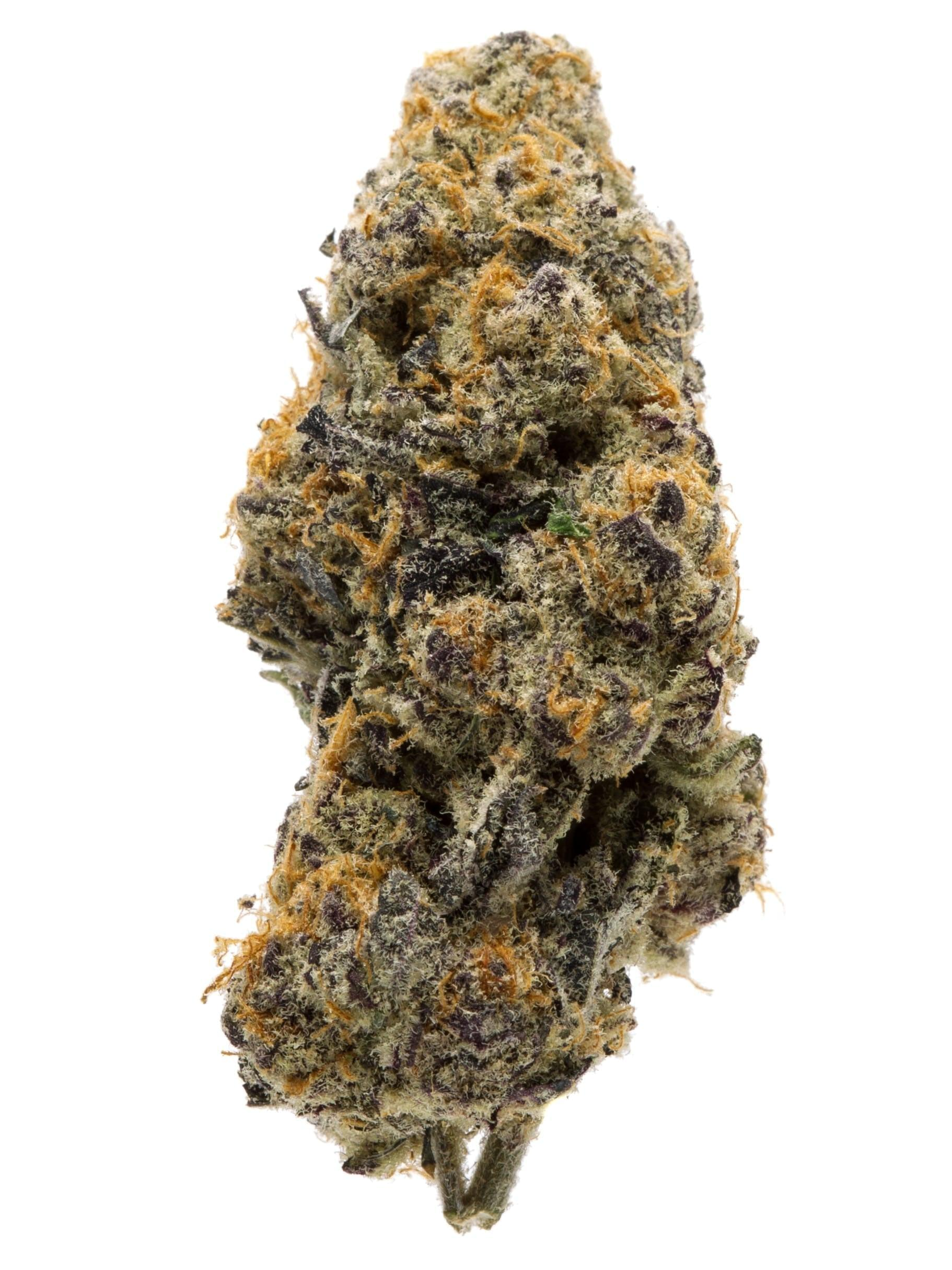 What is Grandaddy Purple Marijuana Strain? Is It Beneficial To Any Extent? – Only Zaza