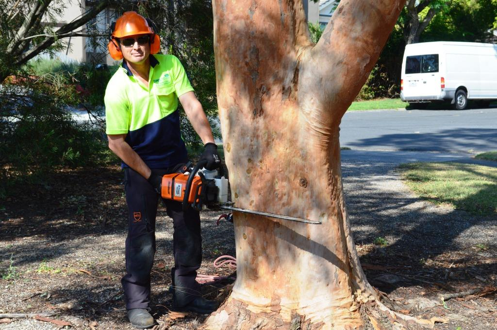Tree Cutting Melbourne – Hedge Trimming Melbourne - Hedge Cutting