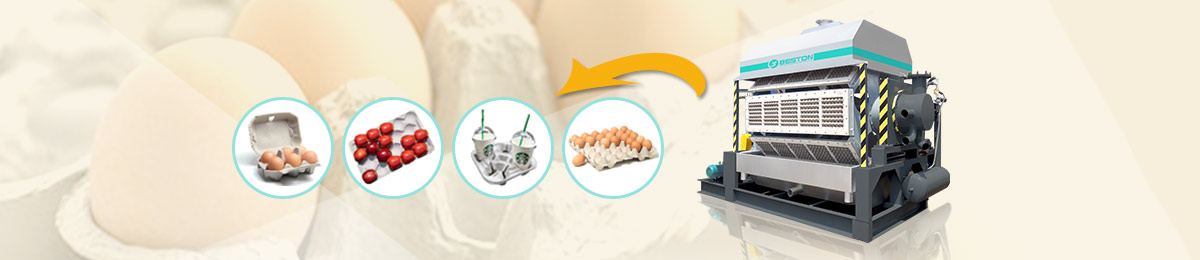 Egg Tray Making Machine - Price List | 24h Online Reply