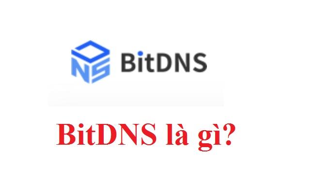 BitDNS là gì? DNS Coin là gì? Mua bán & tạo ví DNS Token ở đâu? -